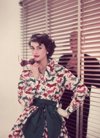 ????Dachshund Print Dress 1950s