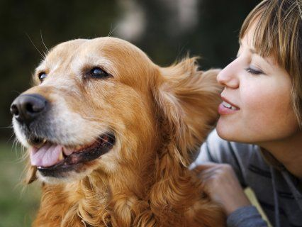 A survey of 1,193 pet owners has revealed that 65% of dog owners are more likely to tell their innermost secrets to their pet instead of their partner.