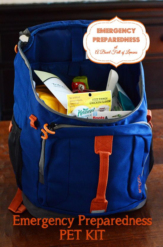 Emergency Preparedness Pet Kit