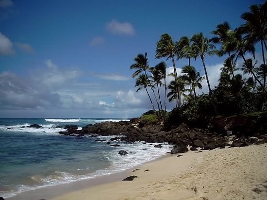 Hawaii, the north shore