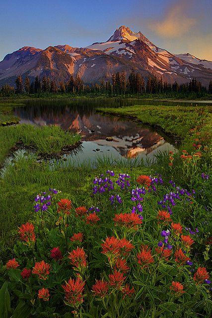 Jefferson Park Wilderness, Oregon