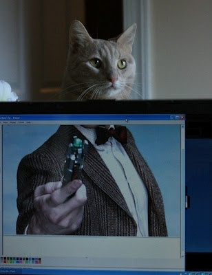 Doctor Who  Doctor Mew