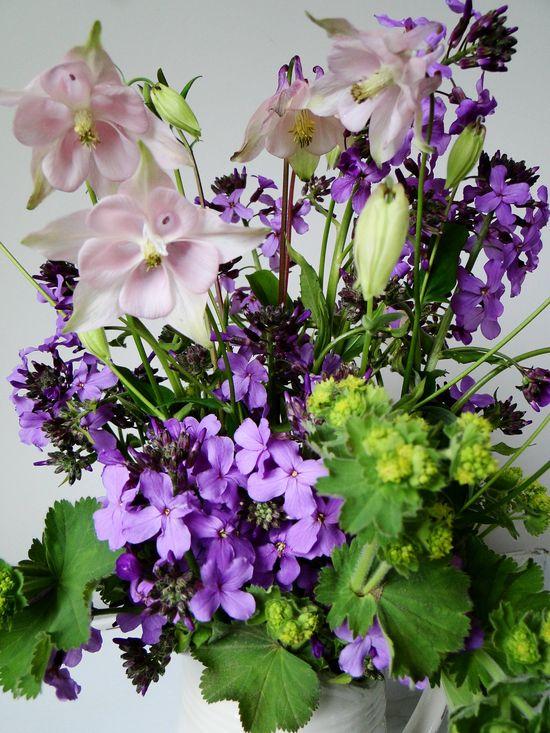 Sweet rocket flower arrangement