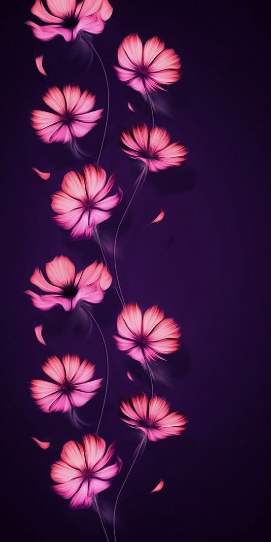 Flower wallpaper  Board