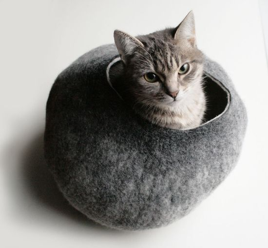 For my cats. This is the best cat bed that I have seen so far. Cat Bed / Cave / House / Vessel - Hand Felted Wool - Warm Gray Stone - Crisp Contemporary Design - READY TO SHIP. $59.00, via Etsy.