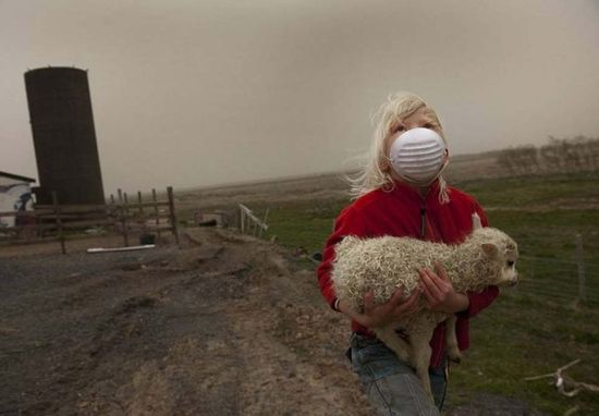 The little girl who saved a baby lamb from a volcano in Iceland.