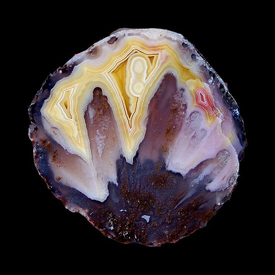 Baby Coyamito Agate #minerals #rocks #crystal
