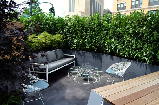 NYC Terrace + beautiful landscaping