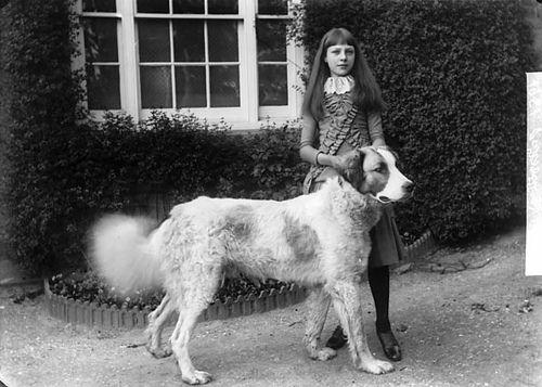 Girl with a dog, Llansanffraid [Glynceiriog?]. John Thomas, ca. 1885.