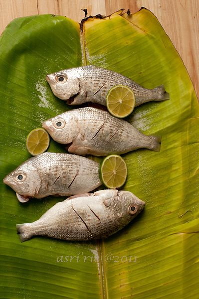 ? Food styling photography fishes green banana leaf