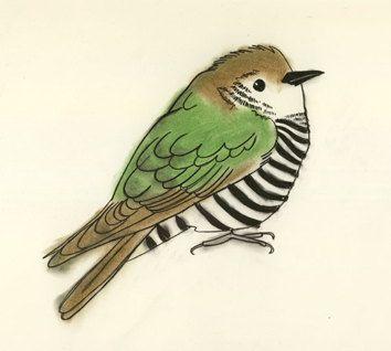 birdie + stripes.