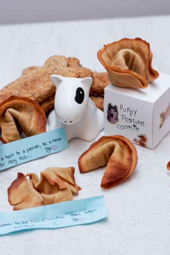 Homemade Dog Fortune Cookies