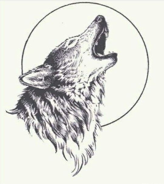 Wolf Drawing Tattoo Maoritattoos Wolf Tattoo