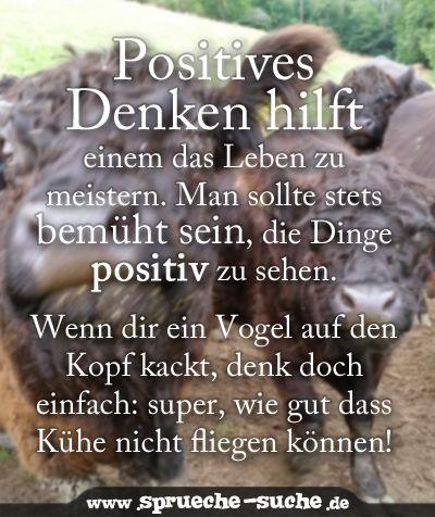positives denken: optimismus als Überlebensstrategie | lustige und