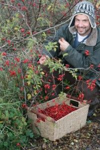 Wild man, wild food - interesting site for foraging in the UK