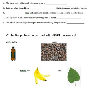 Types of soil quiz worksheet products types of and for Soil questions