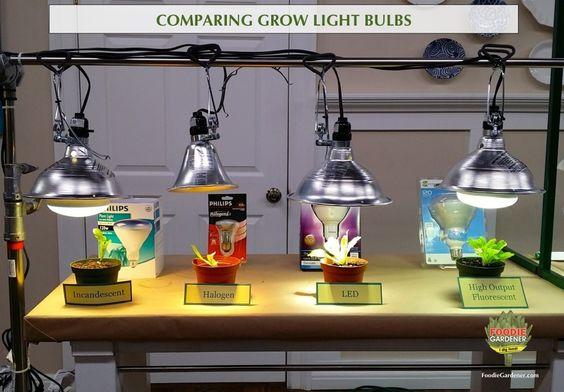 Grow Lights Compact Fluorescent Bulbs And Plants On Pinterest