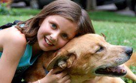 Los perros también necesitan que los niños les dejen respirar
