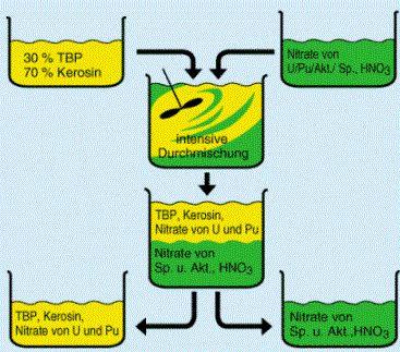 Plutonium - Eigenschaften, Darstellung und Anwendung-Die Abtrennung der Spaltprodukte und Aktiniden erfolgt mithilfe des Extraktionsmittels     TBP 30 (Tri-n-Butyl-Phosphat, verdünnt mit 70% Kerosin), welches in Anwesenheit von Salpetersäure die Nitrate des Plutoniums und Urans unter Komplexbildung löst. Die Nitrate der Spaltprodukte und Aktiniden verbleiben dagegen in der wässrigen Phase. Durch Abtrennung der organischen Phase können so Uran und Plutonium abgetrennt werden. Durch…
