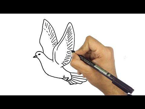 تعليم الرسم للاطفال كيف ترسم حمامة جميلة خطوة بخطوة للمبتدئين Youtube Drawings