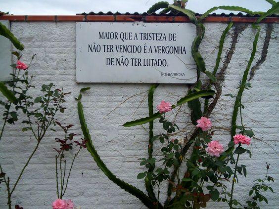 """Maior que a tristeza de não ter vencido é a vergonha de não ter lutado."""" - Rui Barbosa by Cláudia Back"""