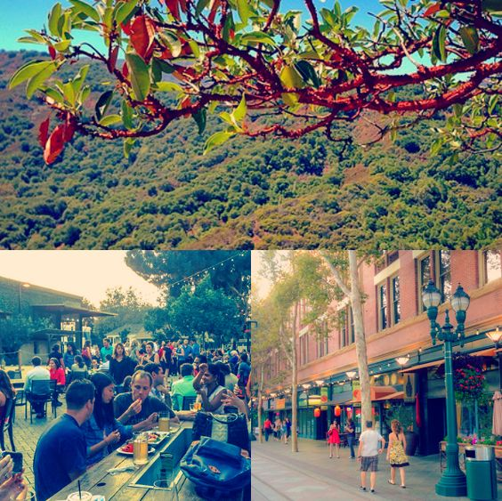 Five reasons I love my hometown--some of my favorite things to do in San Jose, California
