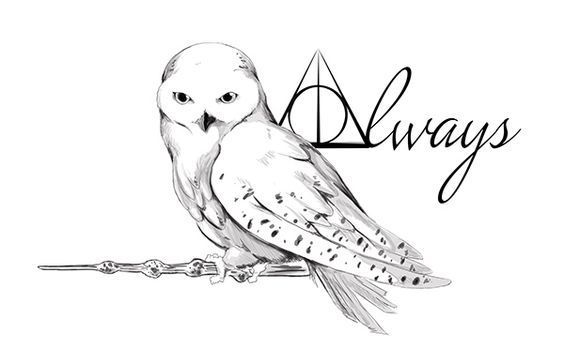 A Tattoo Design For A Friend Based On Hedwig From Harry Potter Harry Potter Owl Harry Potter Drawings Owl Tattoo Design