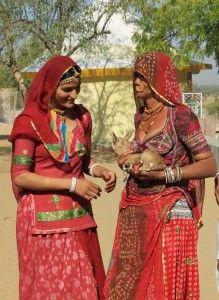 Bishnoi of India