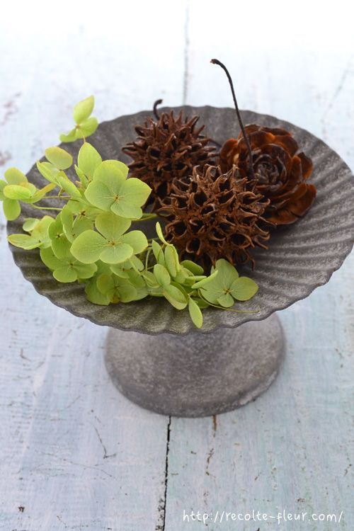 剪定したあとはどうする アナベルの5つの飾り方アイデア Lovegreen ラブグリーン 2020 剪定 ドライフラワー 花の飾り
