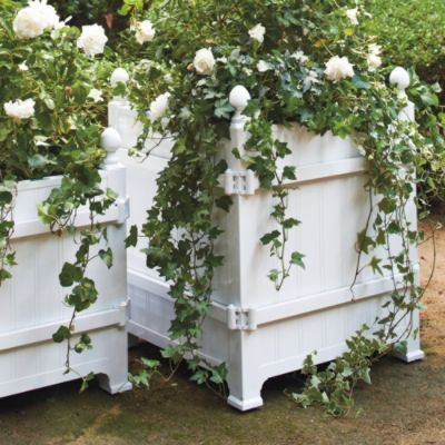 House Planters And Versailles On Pinterest 640 x 480