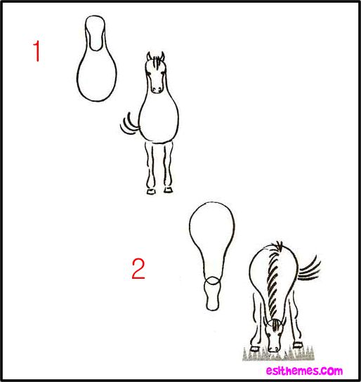 how to draw a horse for beginners