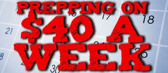 TEOTWAWKI Blog: Getting Prepared on $40 a Week: Introduction