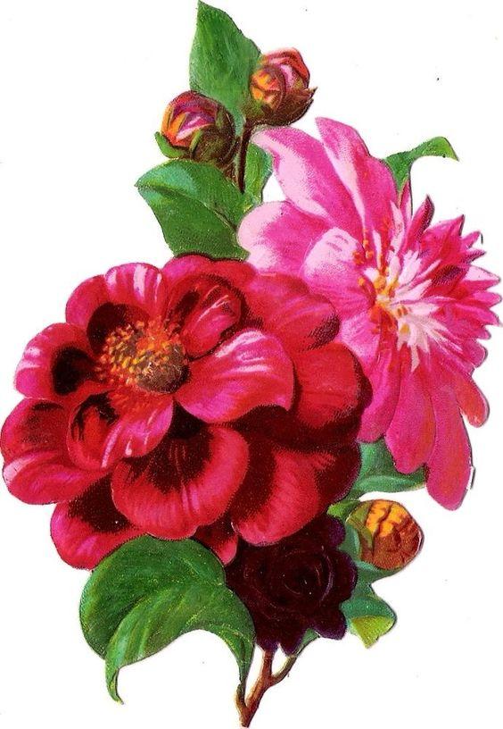 Oblaten Glanzbild scrap diecut chromo Blume 14cm flower fleur: