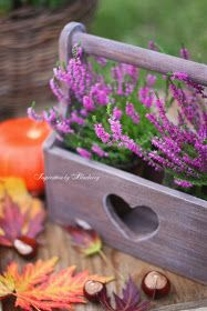 Blueberry: Autumn Basket ♥