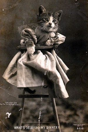 1800's LolCats.  And what IS delaying my dinner?!