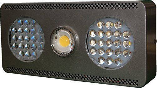 Cheap Blomm 300 Pro Etl Ce Rohs Compliant300 Watts 12 Band Dual Mode Full Spectrum Cree Cxb2540 Indoor Grow Lights Best Led Grow Lights Grow Lights For Plants