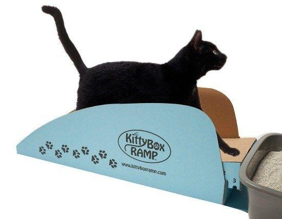 Kitty Box Ramp Make The Litter Box More Accessible For Your Senior Cat Cat Training Senior Cat Litter Box