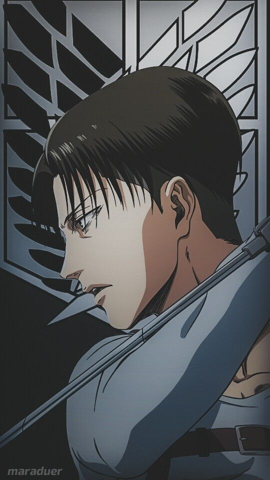 Levi Ackerman Wallpaper Levi Ackerman Wallpaper Attack On Titan