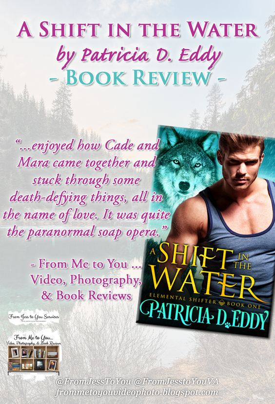 From Me to You ... Video, Photography, & Book Reviews' book review of Patricia D. Eddy's A SHIFT IN THE WATER