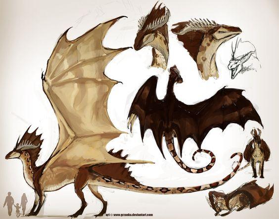 Redtailed Dragoness ref by grzanka.deviantart.com on @deviantART