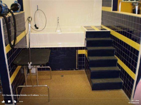 Dog wash New House ideas Pinterest Dogs and Dog wash