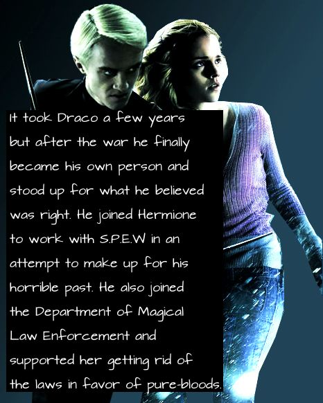 086. It took Draco a few years but after the war he finally became his own person and stood up for what he believed was right. he joined Hermione to work with S.P.E.W in an attempt to make up for his horrible past. He also joined the Department of Magical Law Enforcement and supported her getting rid of the laws in favor of pure-bloods.