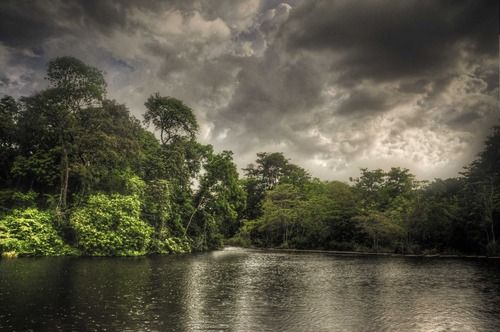 Parque Nacional la Llovizna, Venezuela