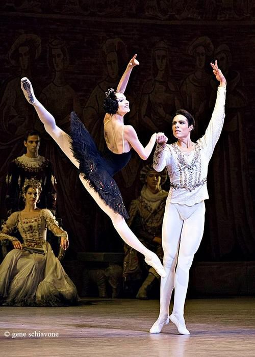 Black Swan pas de deux 'Swan Lake' Marinsky Ballet - Oxsana Skorit Photo source; Google