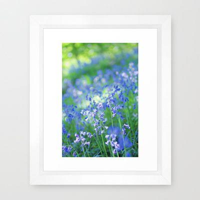 Bluebells Framed Art Print