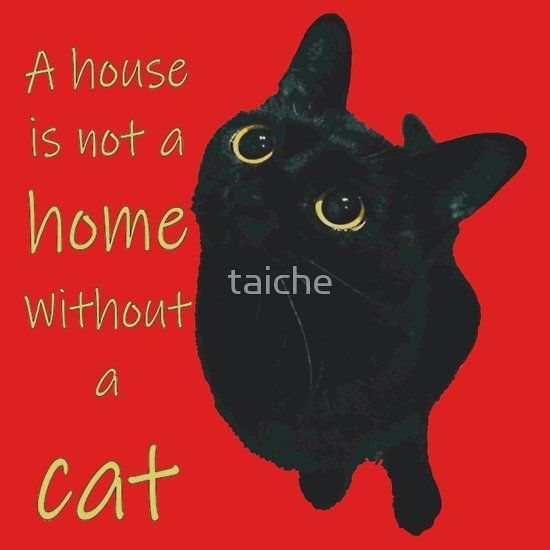 A House Is Not A Home Without A Cat Kids Clothes By Taiche