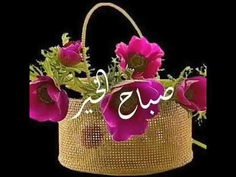 Noor Haleem 355 Channels Add To My Playlists Youtube Good Morning Flowers Rose Good Morning Animation Good Morning Cards