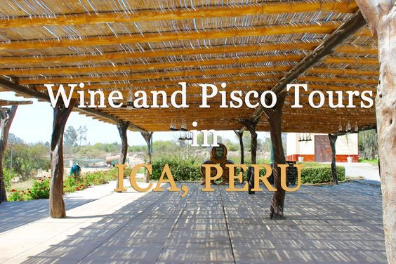 winery and pisco tours in Ica, Peru
