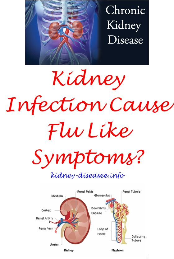Kidney infection symptoms back pain