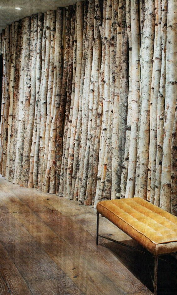In the light tree wall and offices on pinterest for Aspen logs for decoration